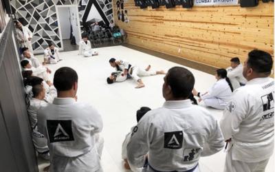 The Process of Learning Brazilian Jiu-Jitsu